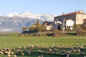 Panoramica-casa-rural-ovelles-blog-primavera
