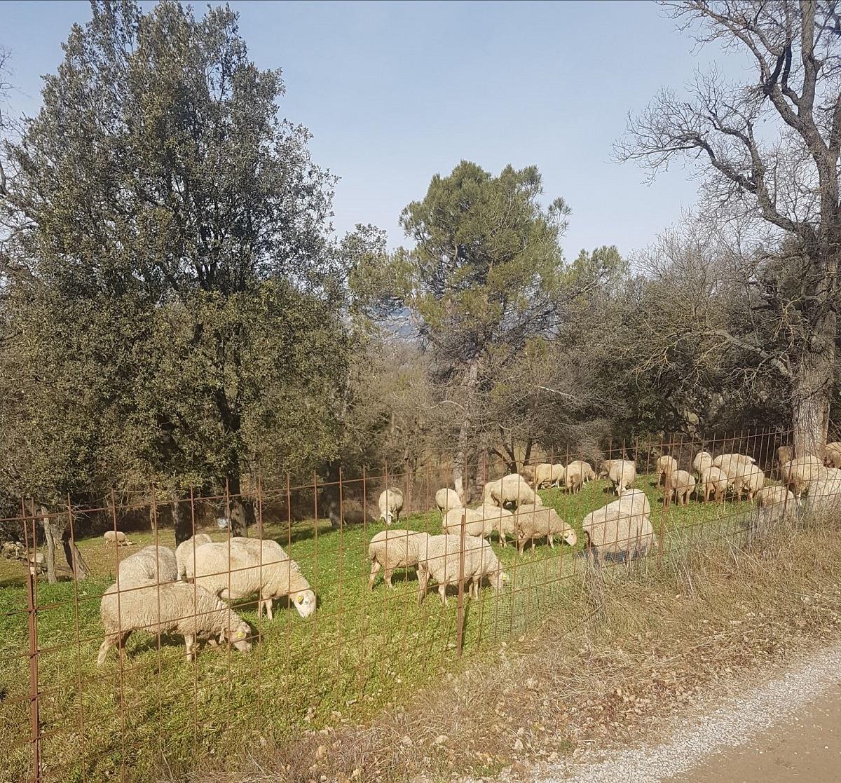 blog-casa-rural-primavera